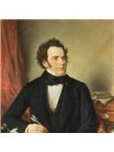 Franz Schubert: Der Musensohn