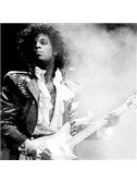 Prince: P Control