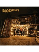 Blossoms: Charlemagne