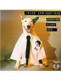 Rick Springfield: Jessie's Girl