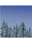 Daniel Martin Rodowicz: A Merry Christmas To Me
