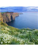Irish Folksong: The West's Awake