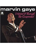 Marvin Gaye: I Heard It Through The Grapevine