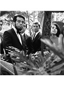 Sergio Mendes & Brasil '66: The Look Of Love