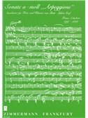 Franz Schubert: Sonata In A Minor