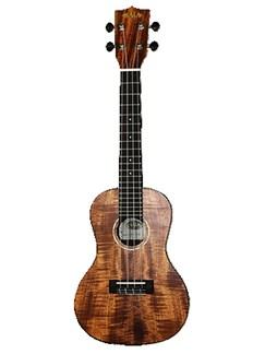 Kala: KA-GAC Golden Acacia Concert Ukulele Instruments | Ukulele