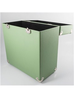 Protelx Limited: GPO Vinyl Case - Green   