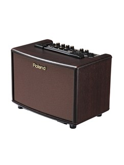 Roland: AC-33-RW Acoustic Chorus Guitar Amplifier  | Acoustic Guitar