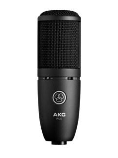 AKG: P120 Large Diaphragm Condenser Microphone  | Voice