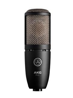 AKG: P220 Project Studio Condenser Microphone  | Voice