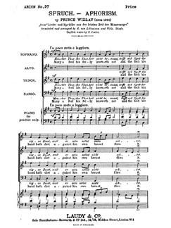 Witzlav, P Aphorism Many A Fool Satb Buch | SATB (Gemischter Chor)