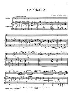 Willem Ten Have: Capriccio Op.24 Books   String Orchestra
