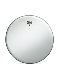 "Remo: 12"" Coated Ambassador Drum Head Instruments 