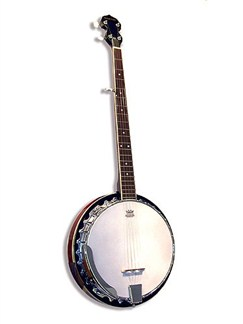 Barnes And Mullins: BJ300 Banjo 5 String Banjo Instruments | Banjo