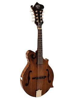 Barnes & Mullins: Salvino Mandolin Instruments | Mandolin