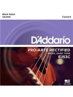 D'Addario: EJ53C Pro-Arte Rectified Ukulele Hawaiian Concert Strings  | Ukulele