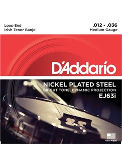 D'Addario: EJ63i Irish Tenor Banjo, Nickel, 12-36  | Banjo