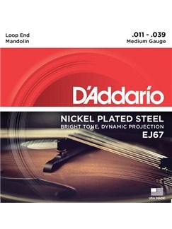 D'Addario: EJ67 Nickel Mandolin Strings, Medium, 11-39  | Mandolin