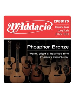 D'Addario: EPBB170 Phosphor Bronze Acoustic Bass, Long Scale, 45-100  | Bass Guitar