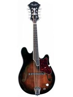 Fender: Robert Schmidt Mandolin Instruments | Mandolin
