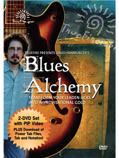 David Hamburger: Blues Alchemy - Transform You Leaden Licks Into Improvisational Gold DVDs / Videos | Guitar