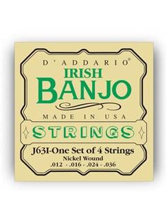 D'addario: J63I Irish Tenor Banjo String Set - Nickel Wound  | Banjo