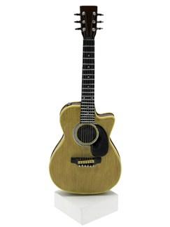 Lesser & Pavey: Model Acoustic Guitar    Acoustic Guitar