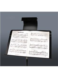 Manhasset: LED Music Stand Lamp  |