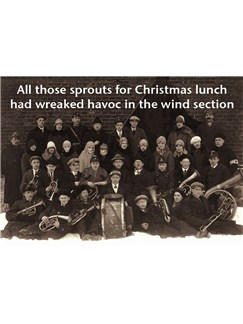 Music Christmas Card: All Those Sprouts Had Wreaked Havoc In The Wind Section  |