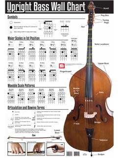 Upright Bass Wall Chart  | Double Bass