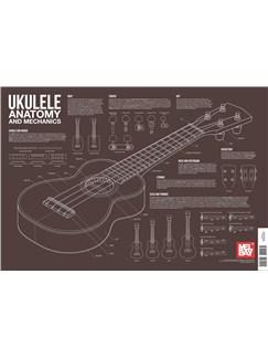Charlie Lee-Georgescu: Ukulele Anatomy and Mechanics Wall Chart  | Ukulele