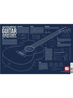 Acoustic Guitar Anatomy And Mechanics Wall Chart  | Acoustic Guitar