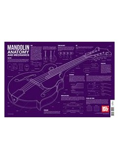 Mandolin Anatomy And Mechanics Wall Chart  | Mandolin