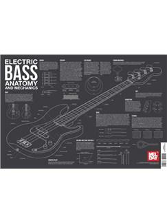 Electric Bass Anatomy And Mechanics Wall Chart  | Electric Guitar, Bass Guitar