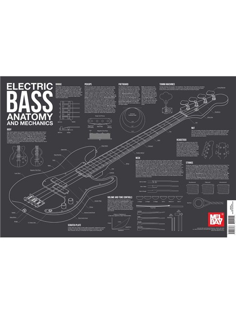 Electric Bass Anatomy And Mechanics Wall Chart Bass Guitar Books