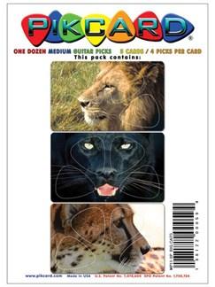 PikCard 3-Pack: Big Cats (12 Guitar Picks)  |