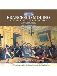 Francesco Molino: Prelude In A Minor Digitale Noten   Gitarre (Klassik)
