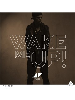 Avicii: Wake Me Up Digital Sheet Music | Lyrics & Chords