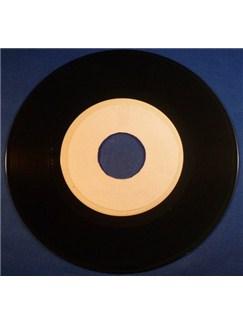 Prince: Purple Rain Digital Audio | Vocal Backing Track