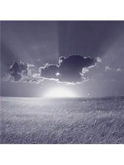 Timothy Shaw: Now Shall My Inward Joys Arise Digital Sheet Music | SATB