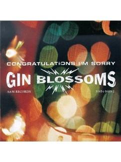 Gin Blossoms: Follow You Down Digitale Noten | Leicht Gitarre