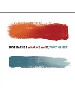 Dave Barnes: Little Lies Digital Sheet Music | Easy Guitar