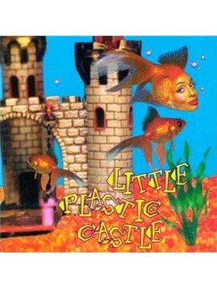 Ani DiFranco: Little Plastic Castle Digital Sheet Music | Piano, Vocal & Guitar (Right-Hand Melody)