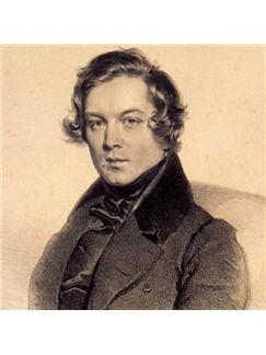 Robert Schumann: The Wild Horseman, Op. 68, No. 8 Digital Sheet Music | Banjo