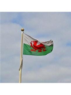 Welsh Folksong: All Through The Night Digital Sheet Music | Flute