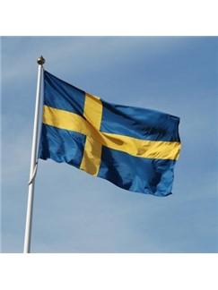 Traditional Swedish: When Christmas Morn Is Dawning Digital Sheet Music | Trumpet