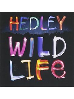 Hedley: Pocket Full Of Dreams Digital Sheet Music | Piano (Big Notes)