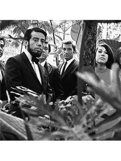 Sergio Mendes & Brasil '66: The Look Of Love Digital Sheet Music | Trumpet
