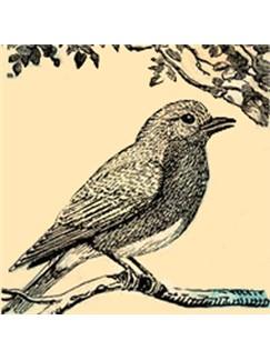 Robert I. Hugh: Sweet I Sing Digital Sheet Music | SATB