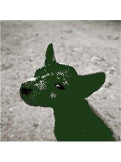 Herbert Kingsley: The Green Dog Digital Sheet Music | Piano & Vocal